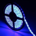 Outdoor Flexible LED RGB Strip 14.4W * 5m - 24V IP65