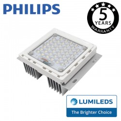 Module LED 40W street Lamp  LUMILEDS