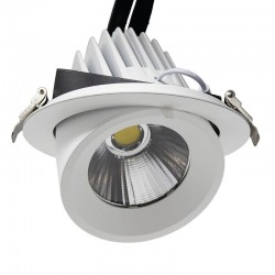 50W Round Adjustable LED Spotlight 24º
