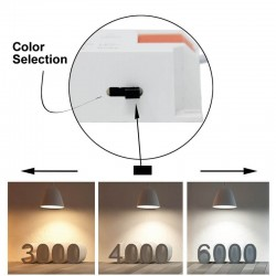25W Round Adjustable LED Spotlight 24º - CCT- Selectable Color