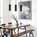 Hanging Black LED Lamp  LONDRES 20W 24º