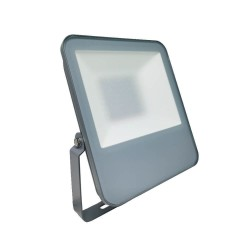 50W LED Outdoor Floodlight Grey EVOLUTION IP65