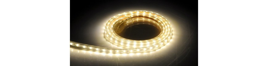LED and Neon LED strips